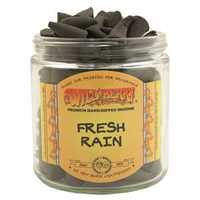 Picture of WILD BERRY INCENSE 100ct CONES - FRESH RAIN