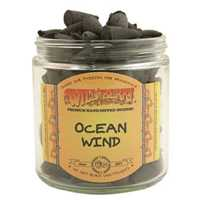Picture of WILD BERRY INCENSE 100ct CONES - OCEAN WIND