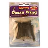 Picture of WILDBERRY 6ct BACKFLOW CONES - OCEAN WIND